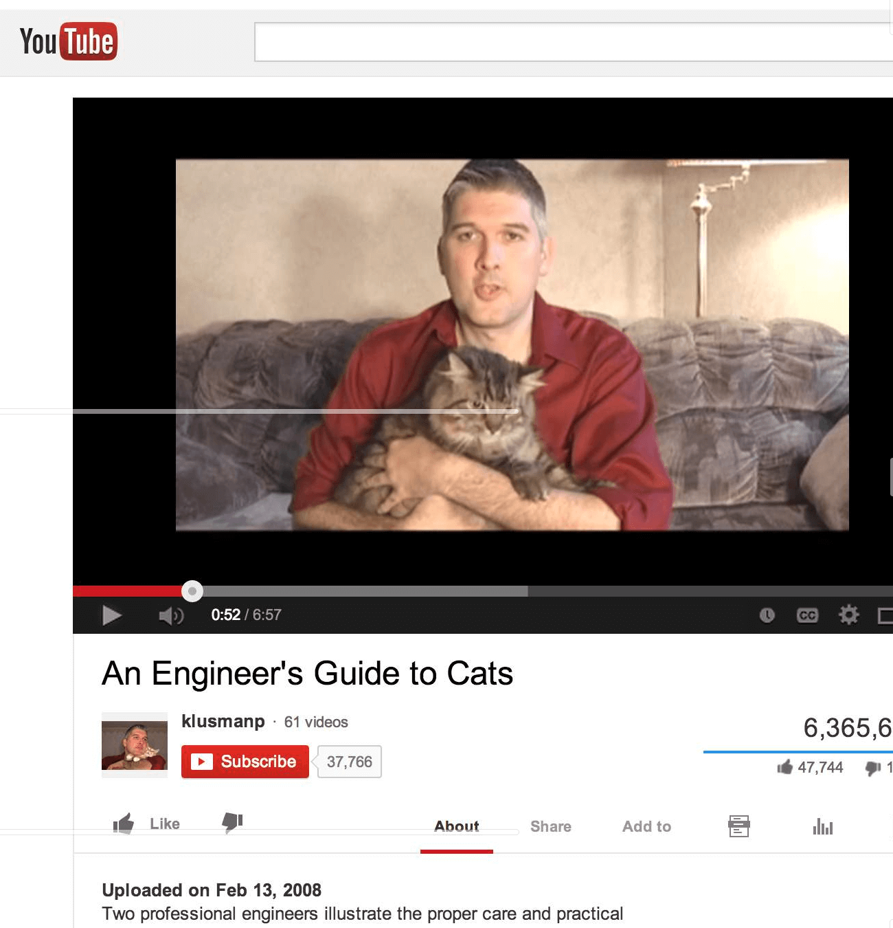 two engineers explain why cats are so great